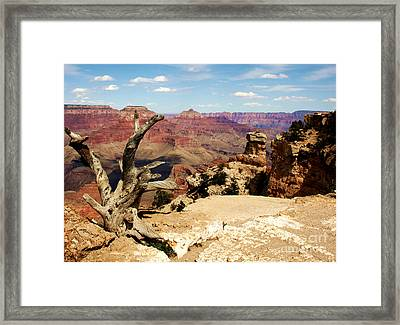 Hermit's Crow - Grand Canyon Framed Print by Juan Romagosa