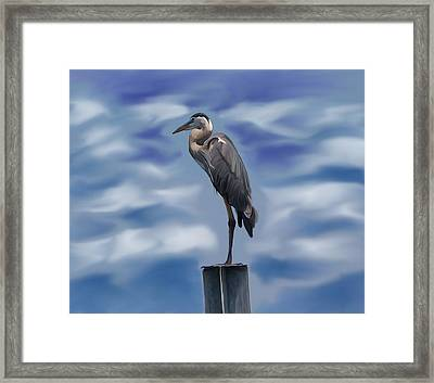 Heron 1 Framed Print by Karen Sheltrown