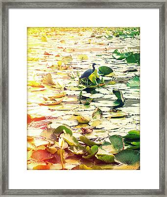 Heron Among Lillies Photography Light Leaks Framed Print by Chris Andruskiewicz