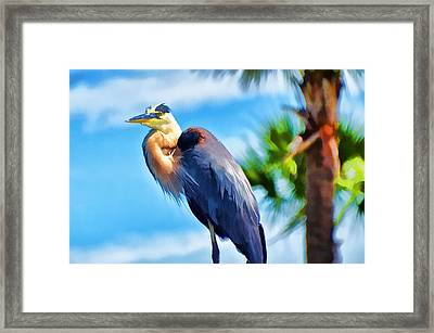 Heron And Palms Framed Print by Pamela Blizzard