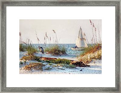 Heron And Sailboat Larger Sizes Framed Print by Michael Thomas