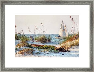 Heron And Sailboat Framed Print