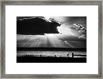 Framed Print featuring the photograph Heron And  The Cloudburst by Michael Thomas
