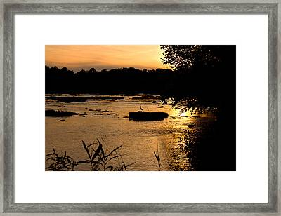 Framed Print featuring the photograph Heron At Sunset by Andy Lawless