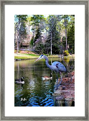 Heron Haven Framed Print