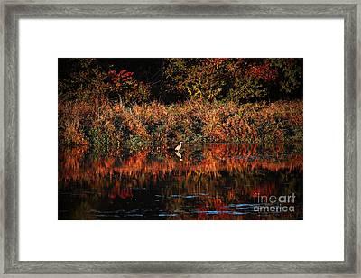 Heron Hideaway Framed Print