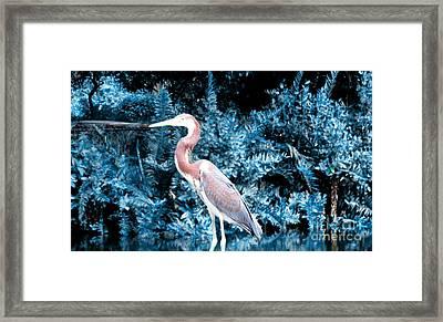Heron In Blue Framed Print
