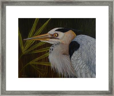 Heron In Hiding Framed Print