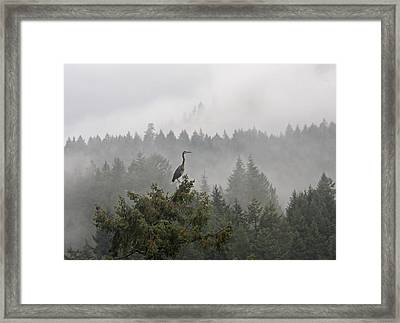 Framed Print featuring the photograph Heron In The Mist by Peggy Collins
