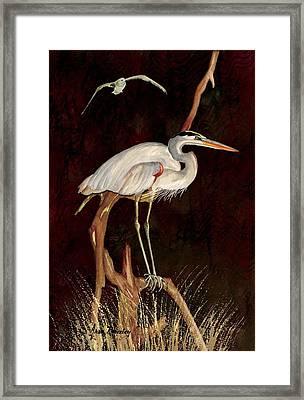 Heron In Tree Framed Print