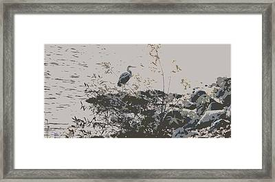Silent Lake Framed Print