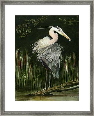 Heron Framed Print by Terri  Meyer