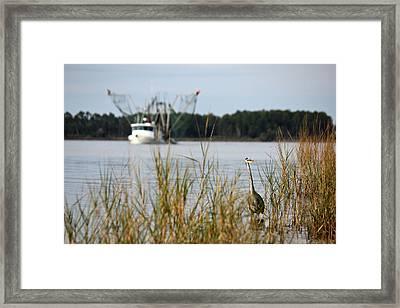 Heron Wading With Passing Shrimp Boat Framed Print