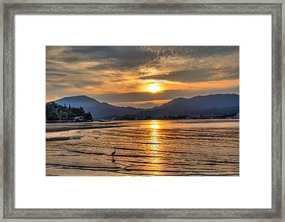 Heron Watching The Japanese Sunset Framed Print by Laura Palmer