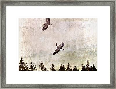 Framed Print featuring the photograph Herons In Flight Monotone by Peggy Collins