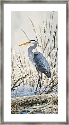 Herons Natural World Framed Print by James Williamson