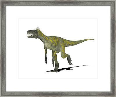 Herrerasaurus Dinosaur Framed Print