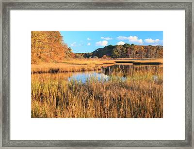 Herring River Cape Cod Marsh Grass Autumn Framed Print
