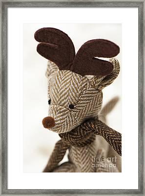Herringbone Reindeer Framed Print by Anne Gilbert