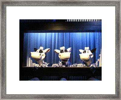 Hershey Park - 121230 Framed Print by DC Photographer