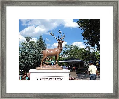 Hershey Park - 121247 Framed Print by DC Photographer