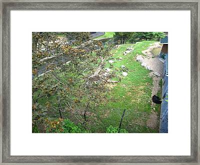 Hershey Park - 12127 Framed Print by DC Photographer