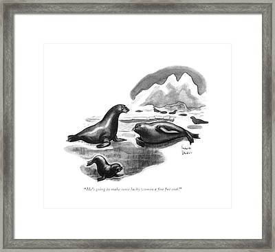He's Going To Make Some Lucky Woman A ?ne Fur Framed Print
