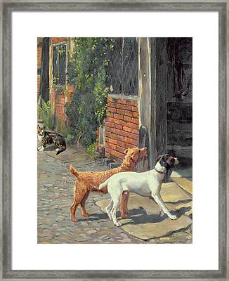 Hesitation Framed Print by Alfred Duke