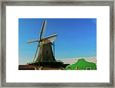 Framed Print featuring the photograph Het Jonge Schaap by Jonah  Anderson
