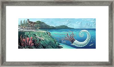 Heteromorph Ammonite Attack Framed Print by Richard Bizley