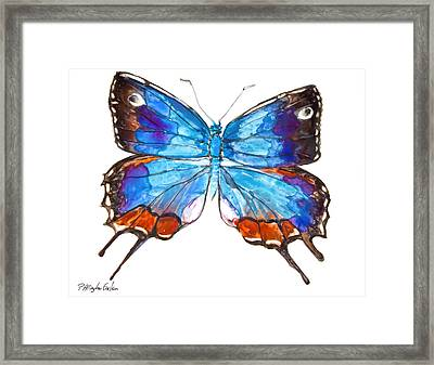 Hewitson's Blue Hairstreak Butterfly Framed Print by Patricia Allingham Carlson