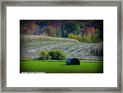 Hay Fall Framed Print