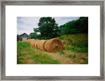 Hey- Hay Roll Framed Print