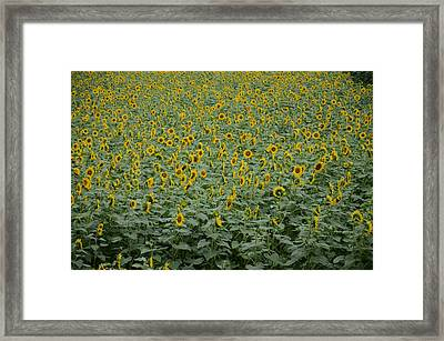 Hey I Am Talking To You Framed Print