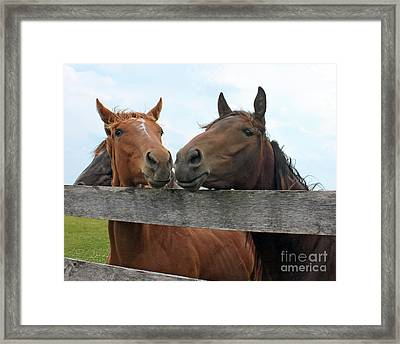 Hey You Come Here Framed Print