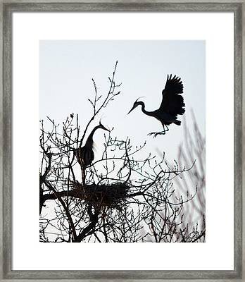 Hi Honey I Am Home Framed Print