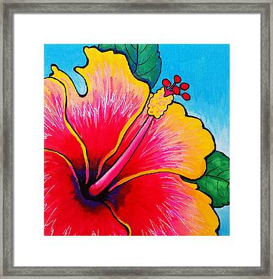 Hibiscus 01 Framed Print
