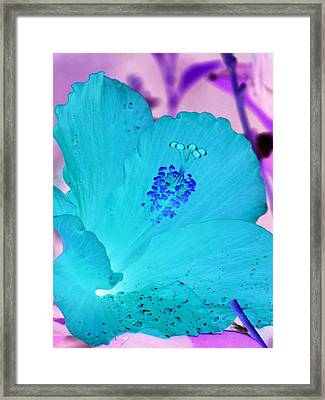Hibiscus - After The Rain - Photopower 760 Framed Print by Pamela Critchlow