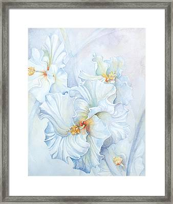Hibiscus Bells Framed Print