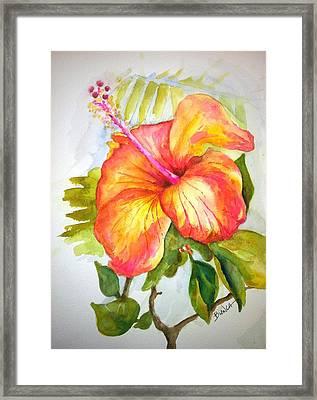 Hibiscus Framed Print by Bianca Romani