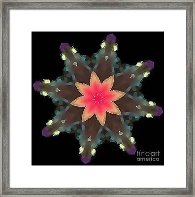Hibiscus Mandala Framed Print