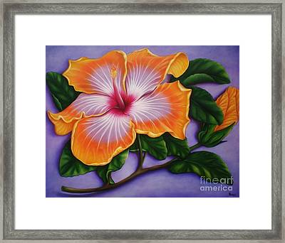 Framed Print featuring the painting Hibiscus by Paula L
