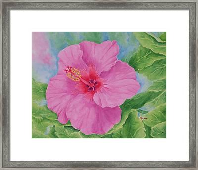 Hibiscus Framed Print by Rhonda Leonard