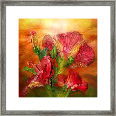 Hibiscus Sky - Red And Gold Tones Framed Print