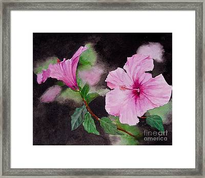Hibiscus - So Pretty In Pink Framed Print by Sher Nasser