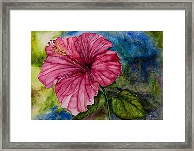 Hibiscus Study Framed Print