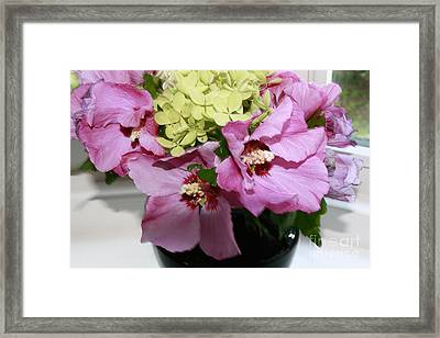 Hibiscus Summer Delight Framed Print by Arelys Jimenez