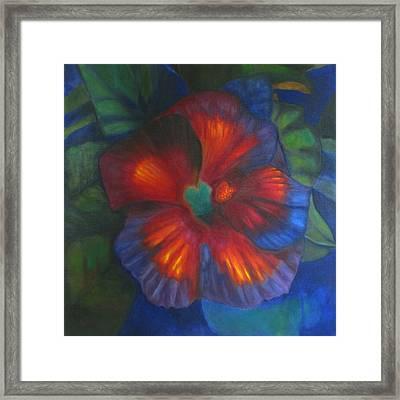 Hibiscus Framed Print by Susan Hanlon