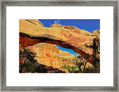 Hickman Bridge Framed Print by Greg Norrell