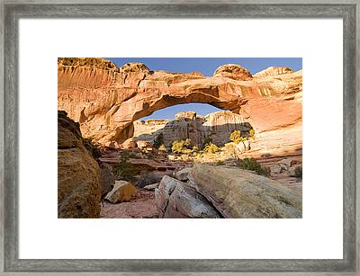 hickmans bridge cap reef N.P. Utah Framed Print